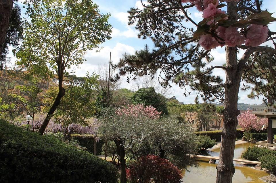 Un giardino incantato nel cuore di roma pediatrico roma bios spa